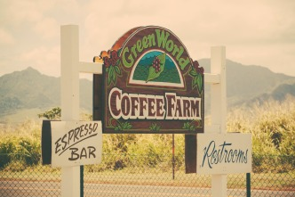 Green World Coffee Farm.